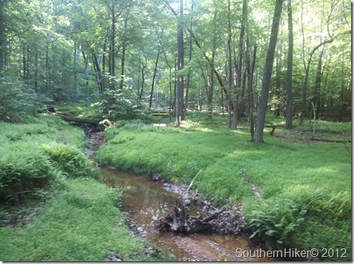 Mary Bird Branch Trail, Little Run Loop–Prince William Forest Park