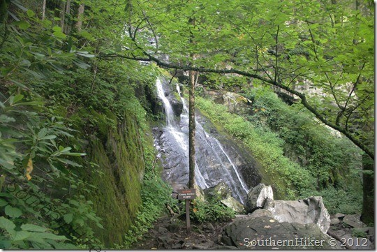 Hen Wallow Falls Trail–Great Smoky Mountains–Cosby, Tennessee